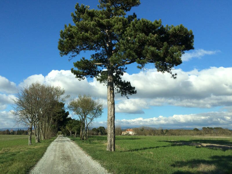 driving to Le Trabet